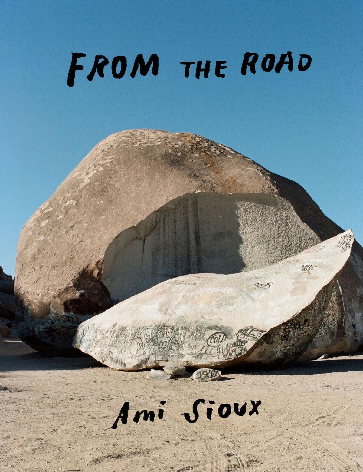 ami_sioux_book_cover.jpeg